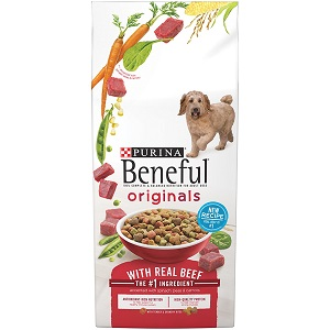 inexpensive healthy dog food