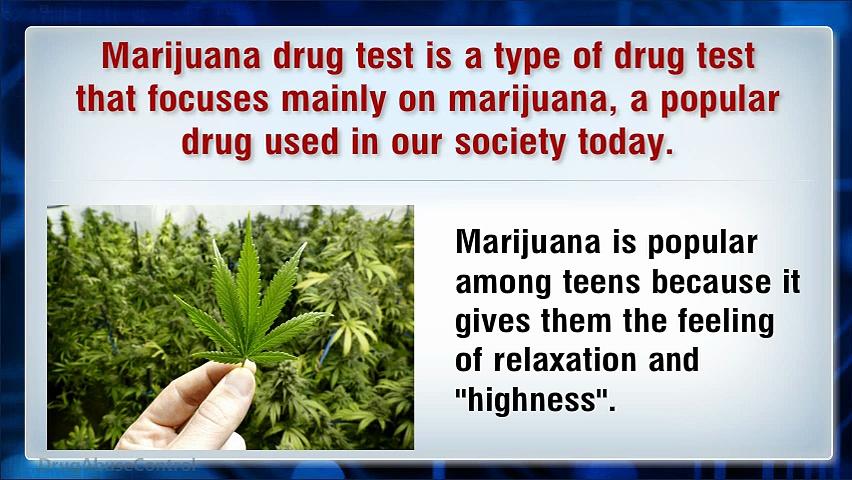 Testing for Marijuana